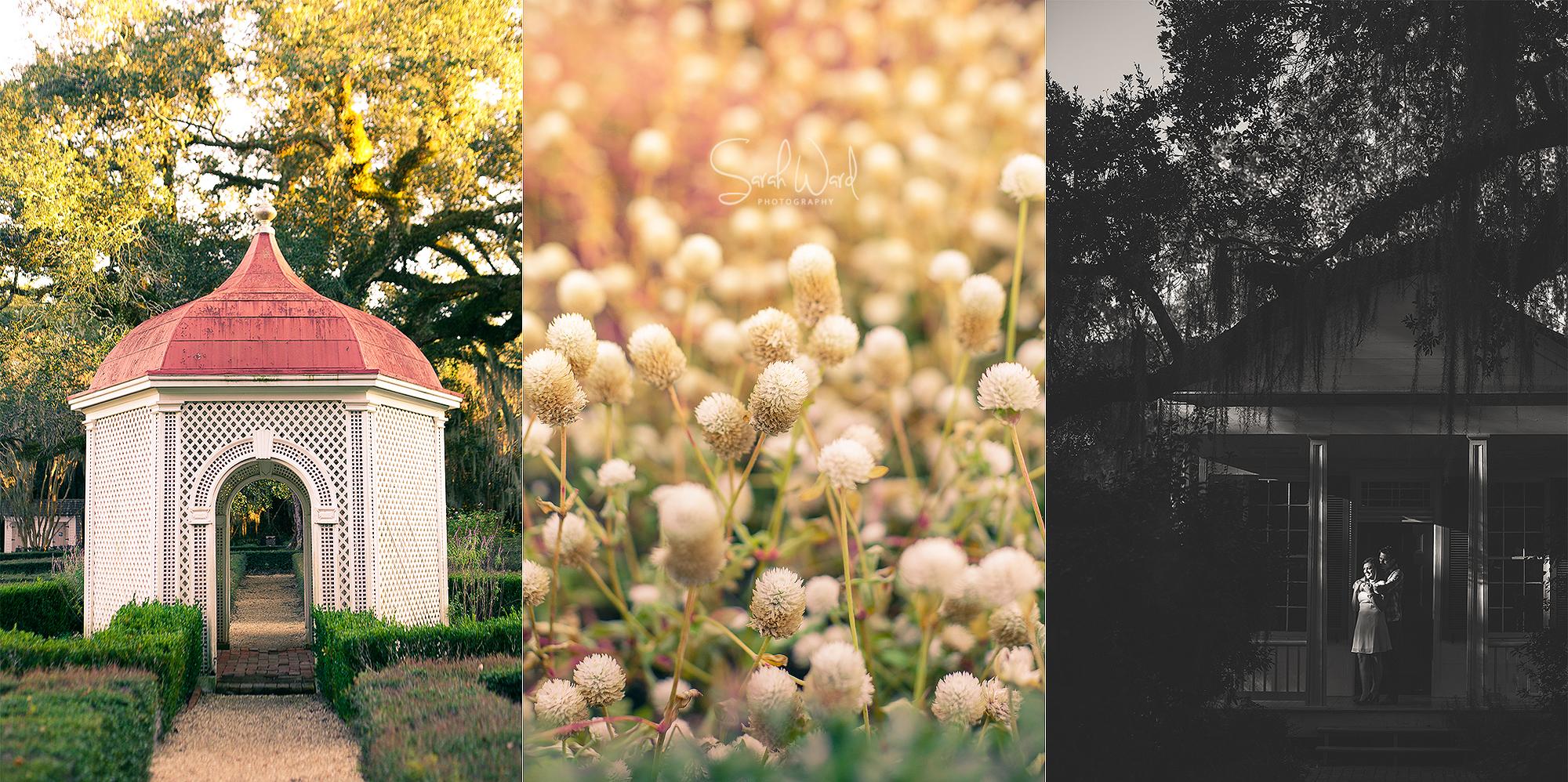 Blog Collage-1416426298057